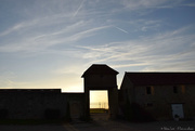 10th Oct 2019 - End of the day at the farm