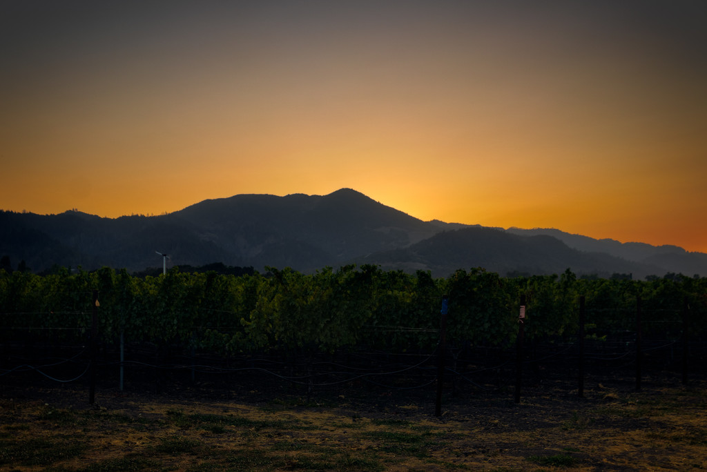 Sunset Over Wine Country by swchappell