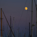 Moon Over Santa Barbara Harbor