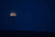 13th Oct 2019 - Morning Moon Decends ~ 6.08am ~ BOB