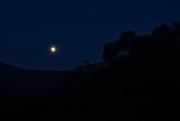 13th Oct 2019 - Morning Moon ~ 6.00am ~ BOB
