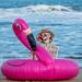 Flamingo Surfing