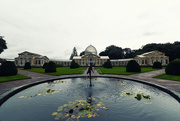 10th Oct 2019 - The Great Conservatory, Syon Park