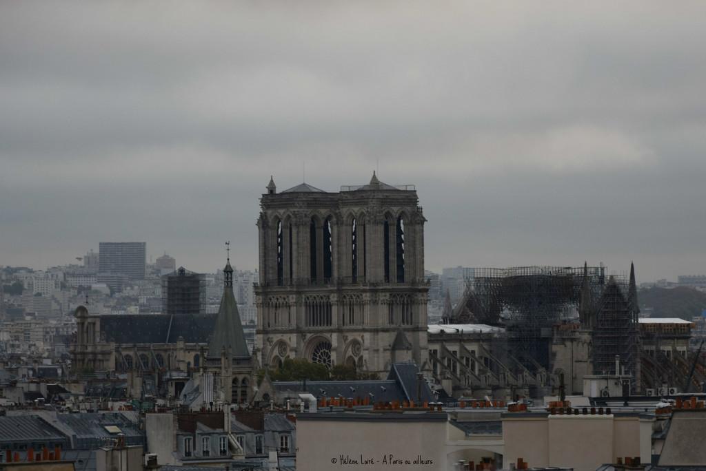 Notre Dame 6 months later by parisouailleurs
