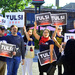 Tulsi supporters  before the debate