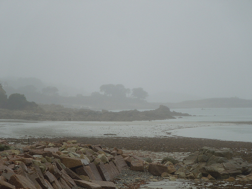 Mist and drizzle (1) by etienne