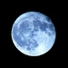 Another Moon in Tungsten Blue by olivetreeann