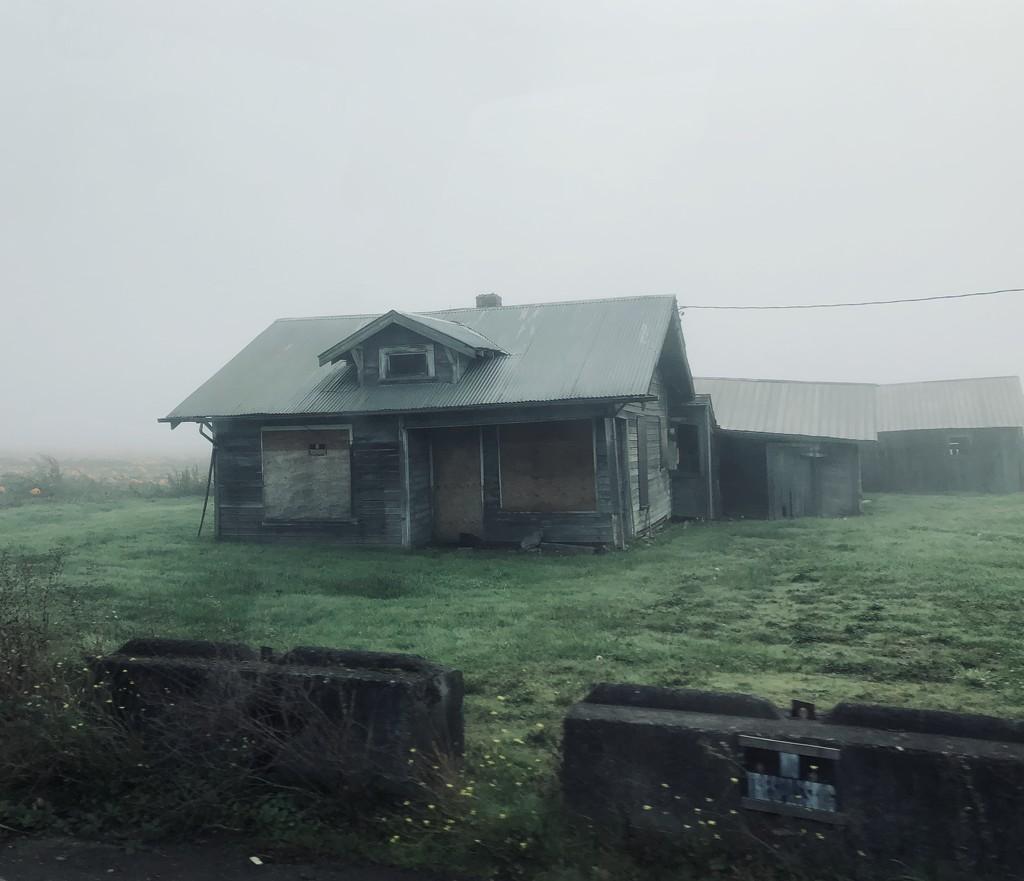 Foggy Day! by nanderson
