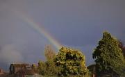 18th Oct 2019 - sunshine , rain and rainbow