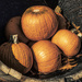 Barrel of Pumpkins
