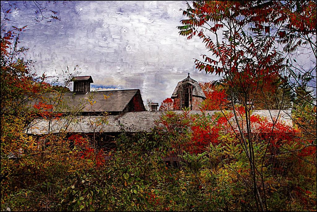 Autumn's Paintbrush by olivetreeann