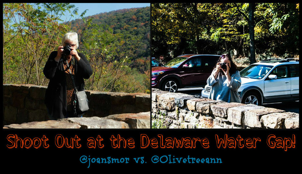 Shoot Out at the Delaware Water Gap by olivetreeann