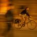 I choose a bike by haskar