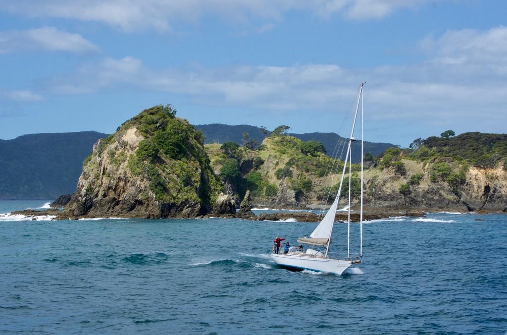 The Beautiful Bay Of Islands DSC_3248 by merrelyn