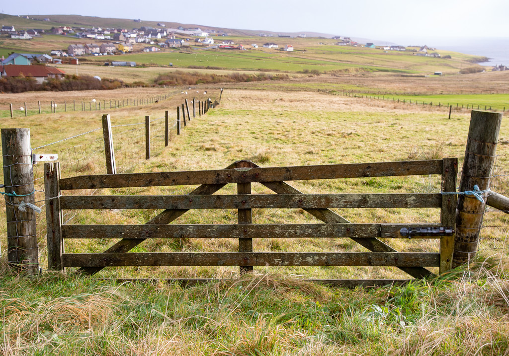 Wooden Gate by lifeat60degrees