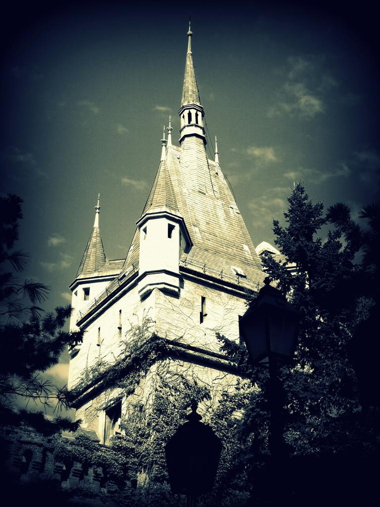 Vajdahunyad Castle by blueberry1222