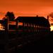 Sunrise Reflection on Fence by kareenking