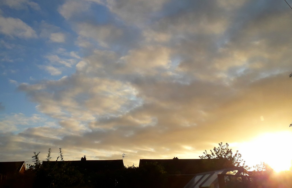 A lovely morning by mave