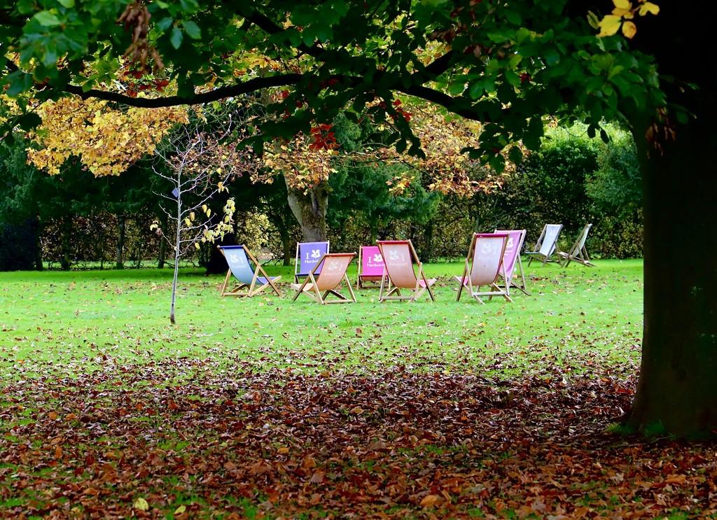 Two Seasons by carole_sandford
