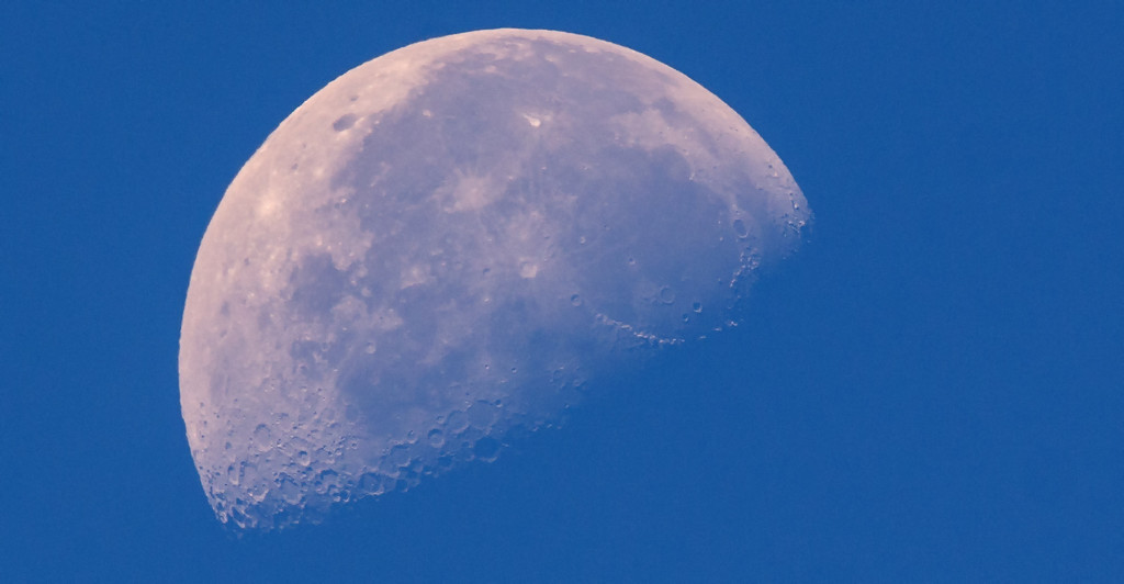 Mid Day Moon Shot! by rickster549