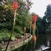 Park Life by reservoirfrog