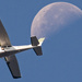 Moon Fly-by! by rickster549
