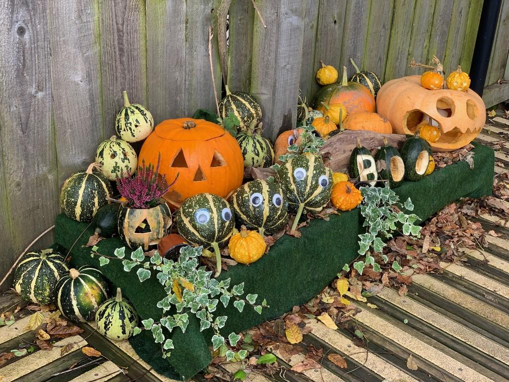 Halloween by 365projectmaxine