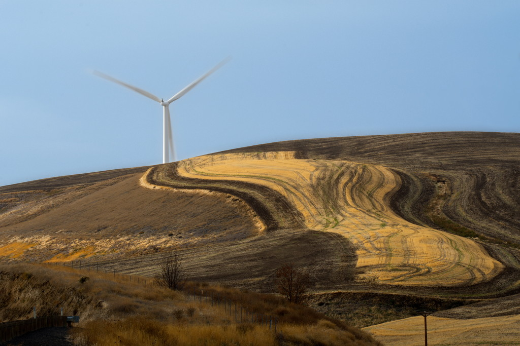 Windmills and Wheat by teriyakih