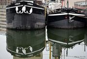 20th Oct 2019 - Boats in Antwerp
