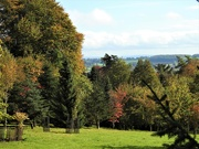 23rd Oct 2019 -  View from Hergest Croft