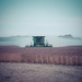 American Harvester by lyndemc