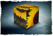 26th Oct 2019 - Sunflowers on a cube