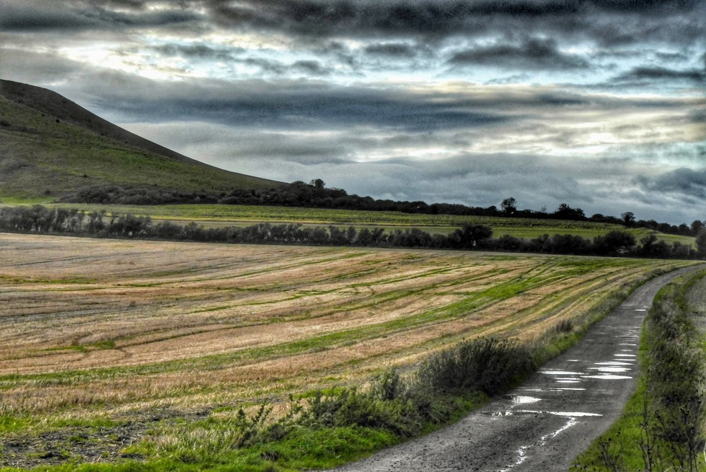 Firle Estate by 4rky