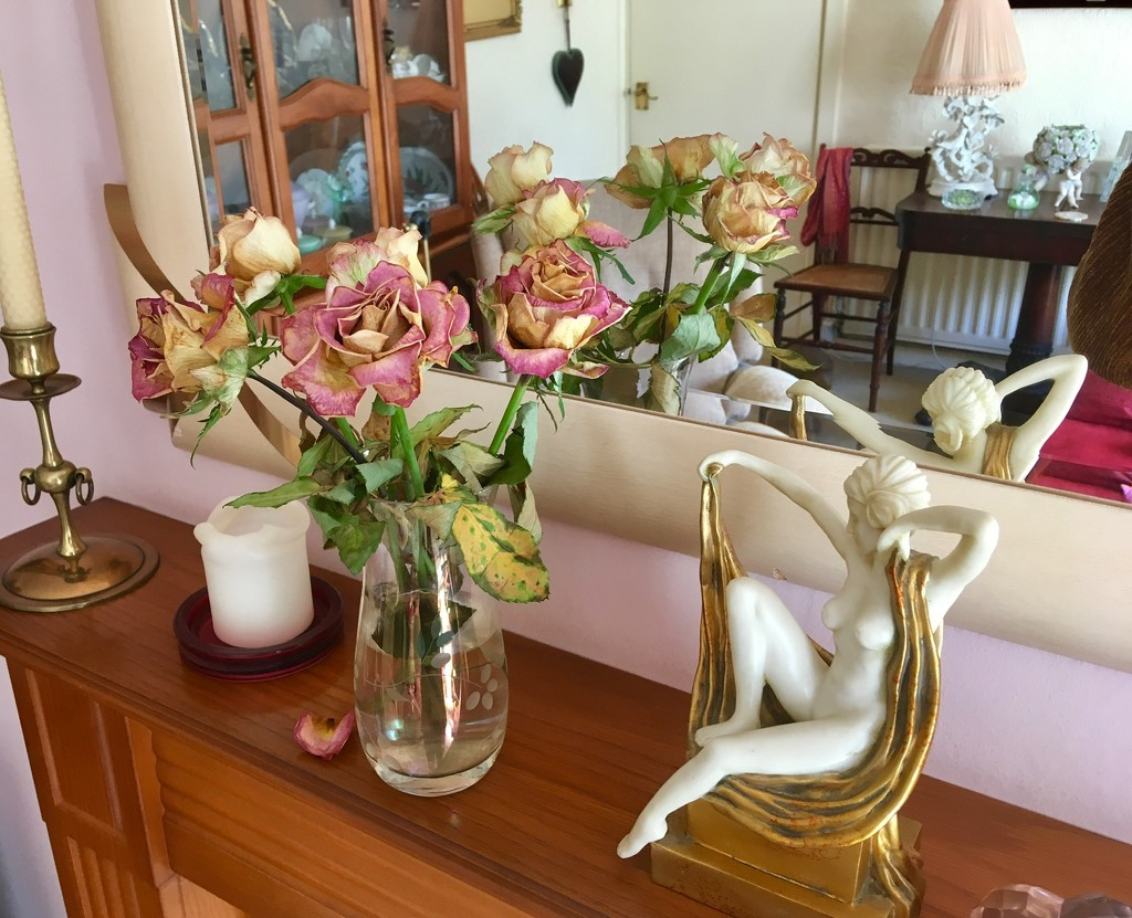 Roses drying beautifully on my mantel piece.. by moominmomma