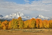 8th Oct 2019 - Grand Teton