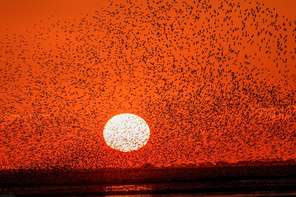 Snettisham Sunset and Spectacular by padlock