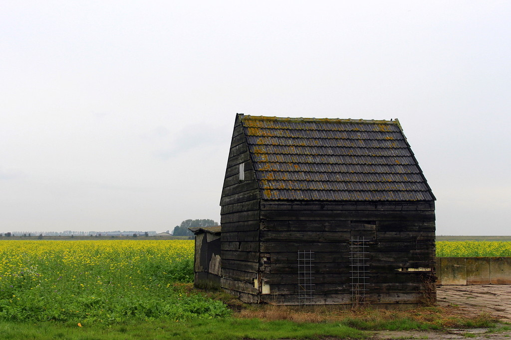 An old shed . by pyrrhula