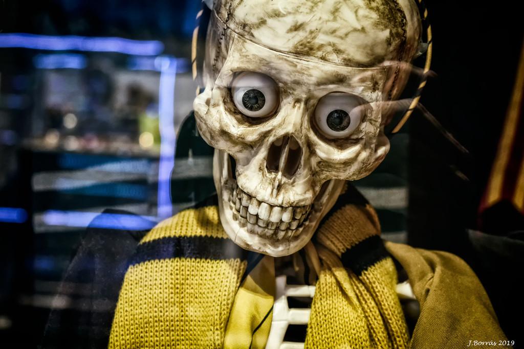 Boooo!!!! Halloween is coming by jborrases