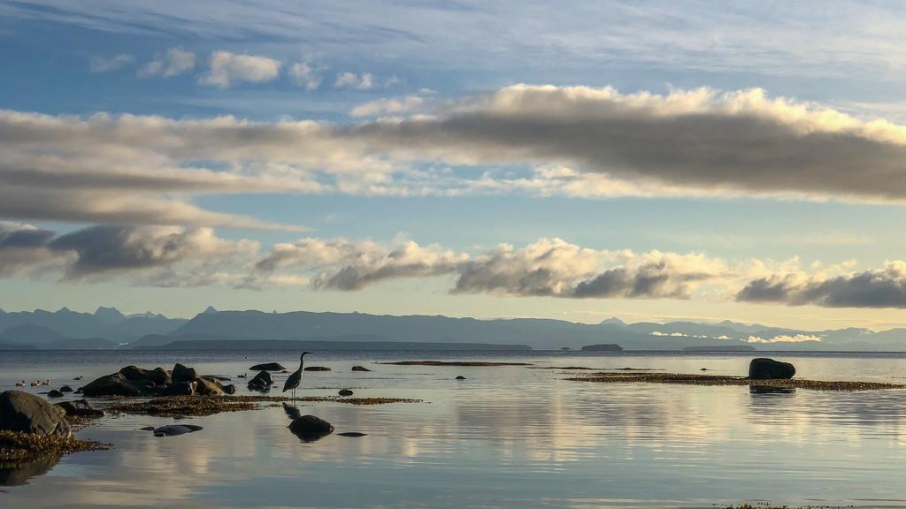 Morning Beach Stroll by kwind