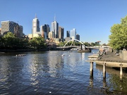 29th Oct 2019 - On the Yarra