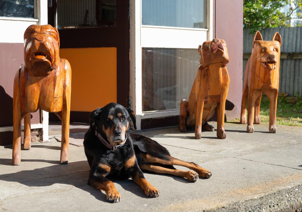 Dog with Dogs by yaorenliu