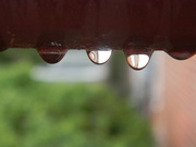 30th Oct 2019 - Raindrops on Railing