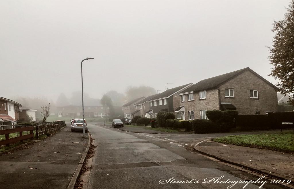 Into the mist by stuart46