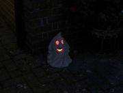31st Oct 2019 - My little ghost