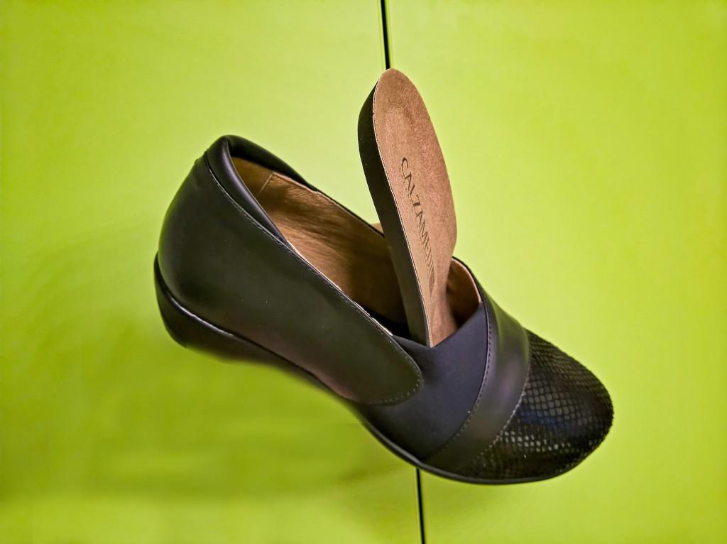 Flying shoe by petaqui