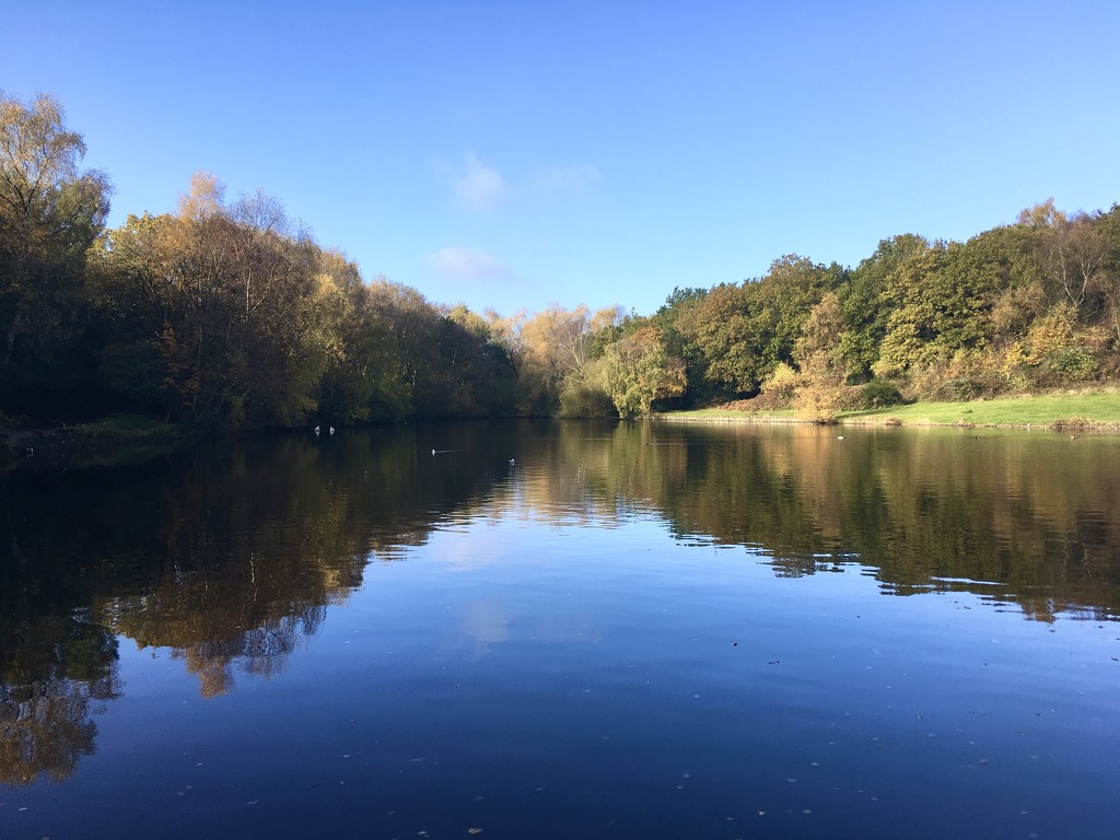Keepers Pool, Sutton Park by moominmomma
