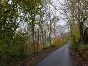 3rd Nov 2019 - Autumn hill