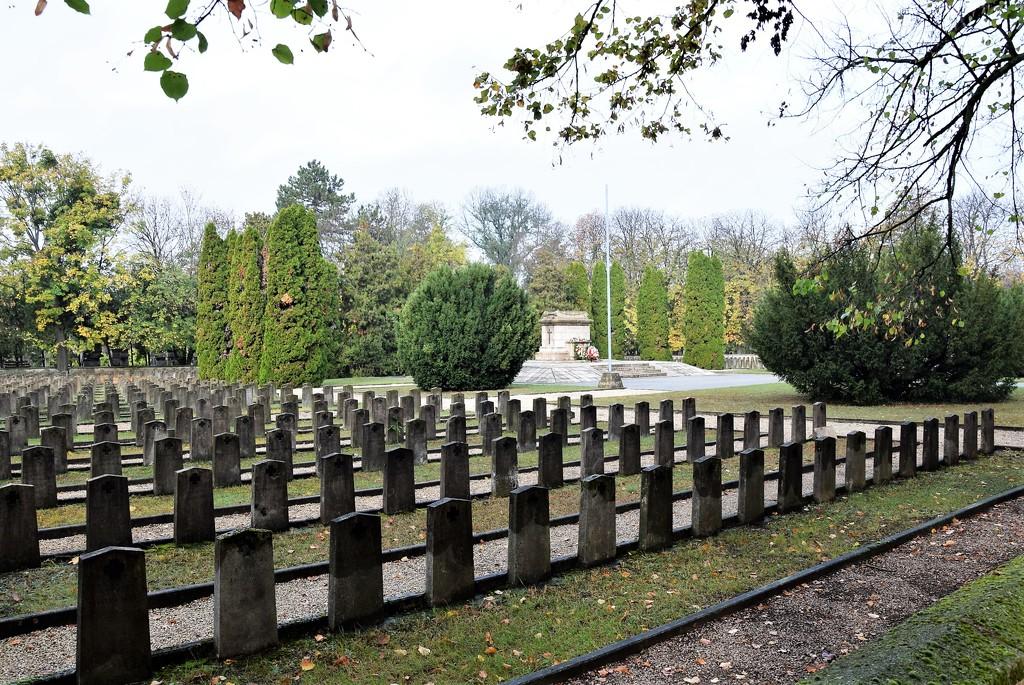 Military cemetery by kork