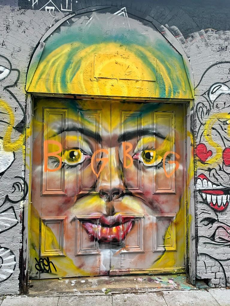 The door.  by cocobella