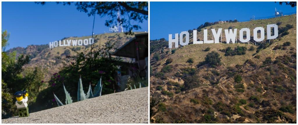 (Day 263) - Backyard Hollywood by cjphoto